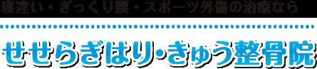 【十勝・帯広】整体・マッサージ師も通う「せせらぎはり・きゅう整骨院」:ホーム